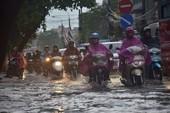 Hà Nội mưa to, cây đổ, đường ngập