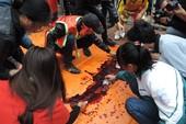 Tổ chức Động vật Châu Á kiến nghị chấm dứt lễ hội chém lợn ở Bắc Ninh