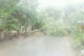 Hà Nội tiếp tục có mưa to về chiều, đề phòng ngập nặng