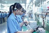 46 DN xuất khẩu lao động bị thu hồi giấy phép