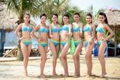 Việt Nam có thêm một cuộc thi hoa hậu được cấp phép