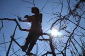 Xuất khẩu lao động, ám ảnh miền đất hứa lên sóng VTV
