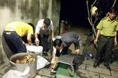Nổ súng bắt nhóm nấu cao hổ trong lò mổ heo ở Đồng Nai