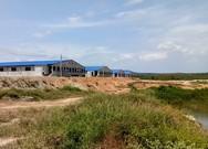 Trại heo rộng 14,000 m2 đe dọa ô nhiễm nguồn nước hồ Trị An