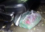 Nhắc đừng xả rác còn bị chửi là hâm