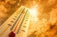 5 loại thực phẩm giúp da tự tin 'đương đầu' với nắng