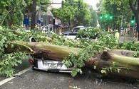 Bão số 1 đè bẹp ô tô, thổi ngã xe máy tại Hà Nội
