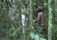 Cận cảnh thổ dân cuối cùng của một bộ lạc trong rừng Amazon