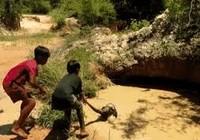 Clip: 2 bé trai dũng cảm giải cứu khỉ khỏi trăn khổng lồ