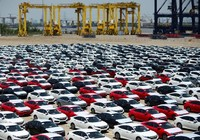 Việt Nam nhập khẩu hơn 3.000 ô tô nguyên chiếc trong 1 tuần