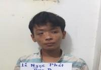 Băng trộm, cướp nhí ở Đồng Nai sa lưới