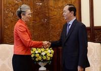 Chủ tịch nước Trần Đại Quang tiếp đại sứ Vương quốc Hà Lan