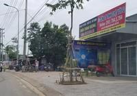 Tìm 'thuốc' trị sốt đất Phú Quốc