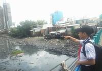 Dùng quỹ đất hai bên để cải tạo rạch ô nhiễm nhất TP.HCM