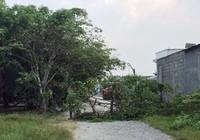 Chấn chỉnh công tác quản lý đất đai trên địa bàn TP.HCM