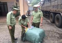 14 tấn quần áo ngoại nhập lớn nhất từ trước đến nay ở Đắk Lắk