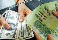 Từ vụ đổi 100 USD ở Cần Thơ, NHNN đề nghị sửa mức xử phạt