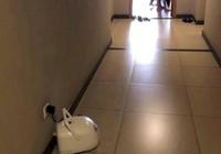Người dân trong chung cư mang nồi cơm điện ra hành lang cắm