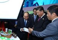 TH true MILK gây ấn tượng tại hội chợ nhập khẩu lớn của TQ