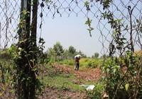 Hàng rào cao tốc Trung Lương bị phá hoại