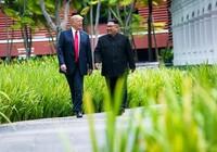 Tuyên bố thiếu cụ thể không có nghĩa Triều Tiên không giải trừ