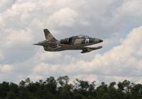Máy bay huấn luyện L-39 Nga rơi, 2 phi công mất tích giữa biển