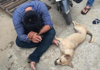 Trộm được con chó mất luôn cả mạng