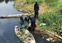Cá chết trắng hồ ở Đà Nẵng