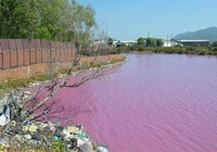 3 tiêu chí 'bình chọn' cơ sở gây ô nhiễm phải di dời