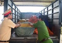 840 kg sụn gà không nguồn gốc suýt nữa lên bàn ăn