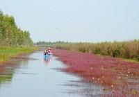 Khu Ramsar 2.000 của thế giới: Về với thiên nhiên!
