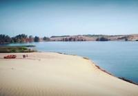 Ốc đảo xanh giữa lòng sa mạc