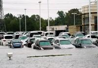 Tranh cãi về công khai ô tô, xe máy bị ngập nước