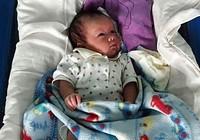 Bé sơ sinh 2 tuần tuổi bị bỏ trước cổng chùa