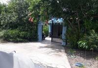 Kiểm điểm thủ trưởng vì không khởi tố vụ giao cấu ở Cà Mau