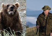Tổng thống Putin kể chuyện bị gấu vây trong rừng