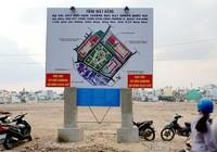Đã chi hơn 23 tỷ đồng hỗ trợ dân vườn rau phường 6, Tân Bình