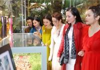 Sao Việt đổ bộ xem Báu vật đại ngàn