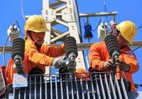 Tổng công ty Điện lực Miền Trung lãi trên 628 tỉ đồng