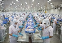 Cổ phần hóa DN phải đảm bảo quyền lợi người lao động