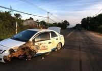 Trốn cảnh sát, taxi chạy ngược chiều tông xe đầu kéo