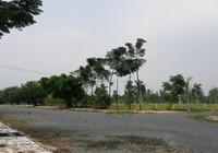 Thanh tra toàn diện Dự án khu dân cư Phi Long 5