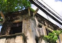 Tháo dỡ biệt thự trên đường Tăng Bạt Hổ