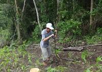 TP.HCM ban hành đơn giá quan trắc và phân tích đất