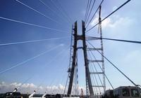 Hợp long cầu dây văng lớn thứ 2 bắc qua Sông Hậu