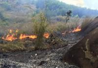 Đã khống chế được hai điểm cháy rừng biên giới Nghệ An
