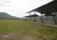 Hợp tác xã kiện công ty đòi 80.000 USD cho nông dân