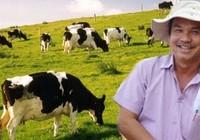 Bầu Đức sẽ ra mắt thương hiệu bò Gia Lai