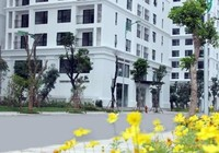 Chủ hộ tái định cư được mua thêm một căn tại cùng địa điểm