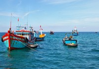 Cứu hộ thành công tàu cá và 14 thuyền viên gặp nạn trên biển